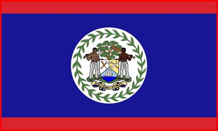 A Standardized Belizean Flag