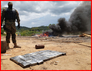60 million dollars in cocaine goes up in smoke