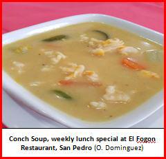 What If You Could No Longer Enjoy Belizean Conch Soup or Ceviche?