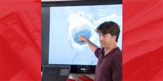 New Shark Fishing Regulation